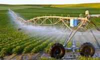 Pertanian Vietnam berupaya sampai tahun 2030 akan berada dalam kelompok 15 negara pelopor di dunia