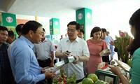 Deputi PM Viet Nam, Vuong Dinh Hue menghadiri konferensi evaluasi masa 10 tahun  pembangunan pedesaan baru di Daerah Nam Bo Timur dan Daerah Dataran Rendah Sungai Mekong