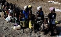 PBB memperingatkan bahaya kehilangan  ketahanan pangan di kawasan selatan benua Afrika