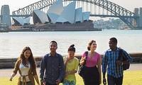 Para  Duta Besar ASEAN di Australia mengirim surat untuk meminta bantuan dari mahasiswa internasional