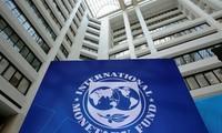 Ekonom  Kepala  IMF merasa pesimistik tentang situasi ekonomi dunia