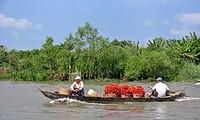 Renforcer le développement socio-économique dans le delta du Mékong