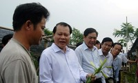 Le vice-Premier Ministre Vu Van Ninh travaille avec les autorités de Hanoi