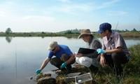 Resolving dioxin contamination in Bien Hoa airport, Dong Nai province