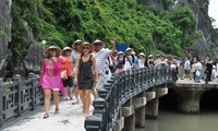 The tourist sector ensures visitors' safety