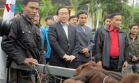 Deputy PM Hoang Trung Hai presents Tet gifts to AO victims in Quang Ngai
