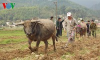 """New Year's """"Going to the field"""" festival of the Giay"""