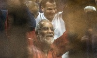 Egyptian court hands down a life sentence to a MB leader