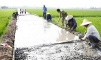 50% of communes achieve new rural standard in 2020