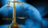 Vietnam's laws comply with international conventions