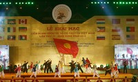 Festival of traditional Vietnamese martial arts held in Binh Dinh