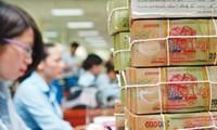 Vietnam has no plans to seek IMF loans to resolve bad debts