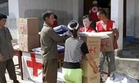 Pyongyang refuses Seoul's aid
