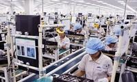 Vietnam-Brazil two-way trade increases sharply