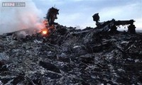 225 victims of downed Malaysia Airlines flight MH17 identified