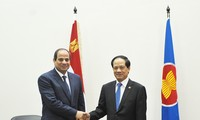 Egypt to Forge Closer Relations with ASEAN
