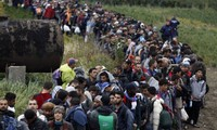 UNHCR: 1.4 million migrants, refugees to reach Europe in 2015, 2016