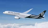 Air New Zealand likely to launch direct flights to Vietnam
