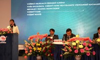 Union of Vietnamese People Associations in Europe makes it debut