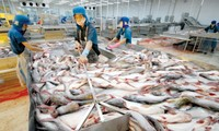 Vietnam's aquatic product growth likely to be challenged in 2017