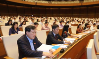 National Assembly adopts Law on Forestry