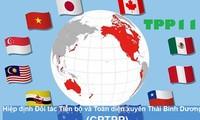 Vietnam prepares to take advantage of CPTPP agreement