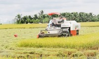 Agricultural restructuring in response to climate change