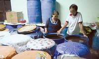 Nam O village in Da Nang City preserves art of fish sauce