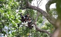 Art program marks 25 years of action for biodiversity