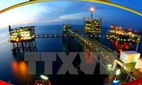 将越南天然气工业建设成为达到世界和国际水平的工业