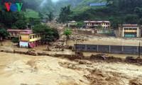 APEC 2017: bientôt la 11e conférence des hauts officiels sur la gestion des catastrophes naturelles