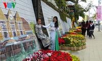 Bientôt le 7ème Festival des fleurs de Dalat