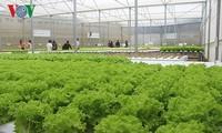Pour des investissements croissants dans l'agriculture