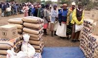 Crise alimentaire au Zimbabwe: le PAM veut aider plus de deux millions de personnes