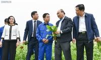 Nguyên Xuân Phuc plaide pour le développement de l'agriculture intelligente