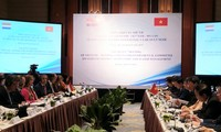 L'adaptation au changement climatique, pilier de la coopération Vietnam-Hollande