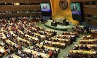 L'ambassadeur du Sénégal à l'ONU: le Vietnam poursuit la paix