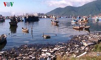 Un projet pour étudier la pollution plastique au Vietnam