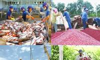 EVFTA: Améliorer la compétitivité des entreprises vietnamiennes