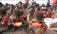 Un jeune enfant sur trois est mal nourri, selon l'Unicef