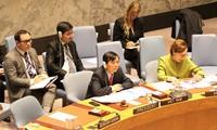 ONU : le Vietnam préside une séance sur la paix en Afrique de l'Ouest
