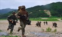 Coronavirus: USA et République de Corée reportent leurs exercices militaires