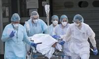 Plus de 4,5 millions de cas de Covid-19 dans le monde