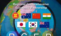 Le RCEP promet la création d'une gigantesque zone de libre-échange