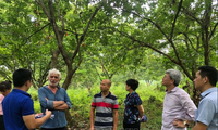 Cao Bang travaille avec des experts du Réseau mondial des géoparcs