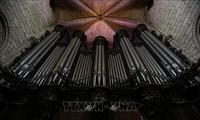 Notre-Dame de Paris: le chantier du plus grand orgue de France a démarré