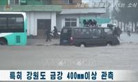 Des bénévoles de la Croix-Rouge aident Pyongyang à faire face au coronavirus et aux inondations