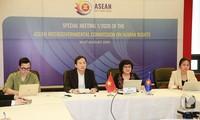 Réunion extraordinaire de la Commission intergouvernementale des droits de l'homme de l'ASEAN