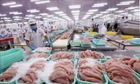 Le Cambodge s'explique sur l'arrêt des importations de quatre variétés de pangas du Vietnam