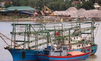 Pêche: le Vietnam va mettre en place des journaux de bord électroniques